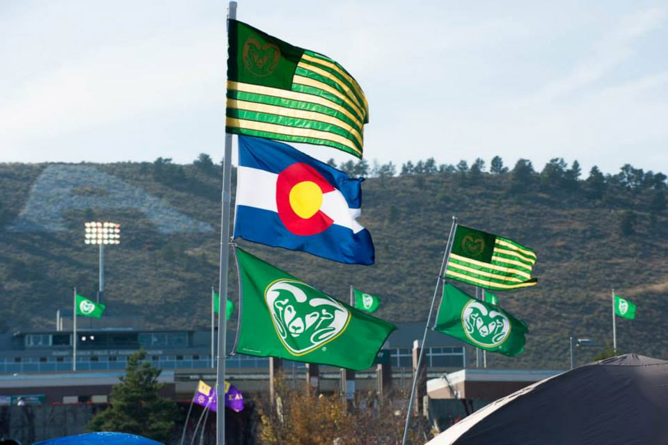 Flags blowing in wind